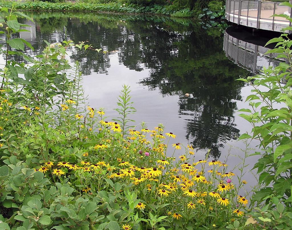 Lewis Ginter Botanical Gardens Richmond Va July 2013 Flickr
