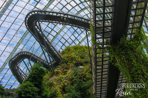160909d Cloud Dome Gardens by the Bay _022