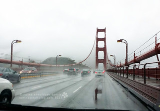 Golden gate Bridge [Feb 9] | by Carina » Polka & Bloom