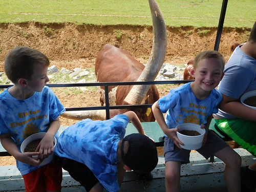 April 28 2017 Safari Park Field Trip 2nd Grade (14)