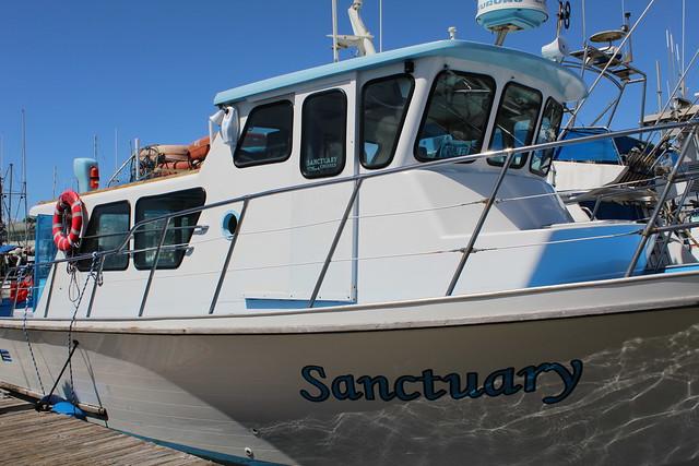 Sanctuary Cruises
