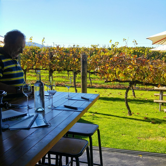 Our last full day on the south island was spent tasting wine in the Marlborough region.