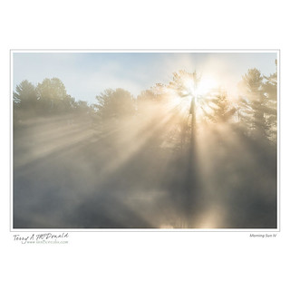 Morning Sun IV | by Terry McDonald - www.luxborealis.com