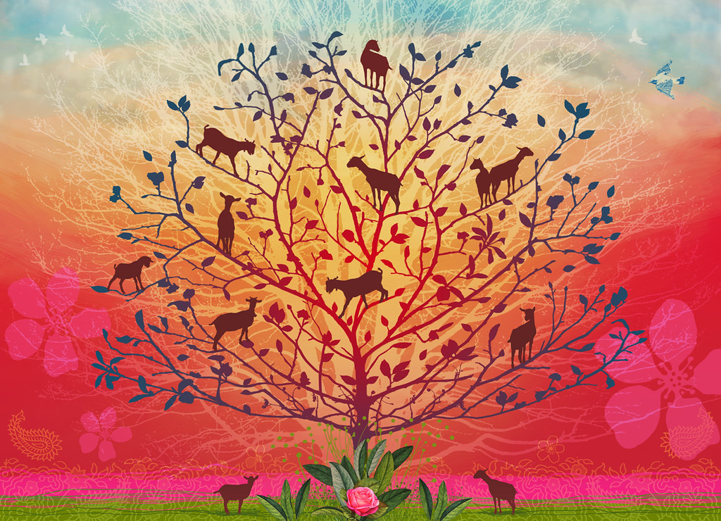 Goats In Trees Showing At The Glasgow Print Studio In