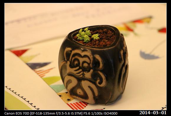 20140301_Plant2