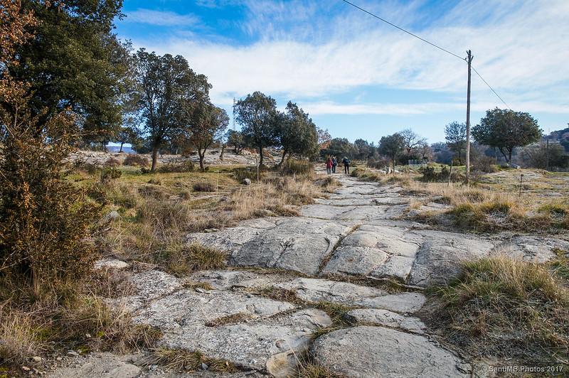 Cami Ral de Vic a Olot a la altura de Puigsespedres