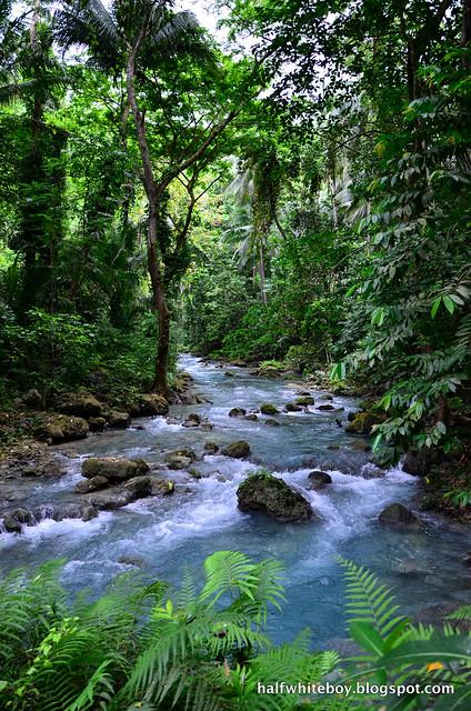 halfwhiteboy - kawasan falls, badian, cebu 04