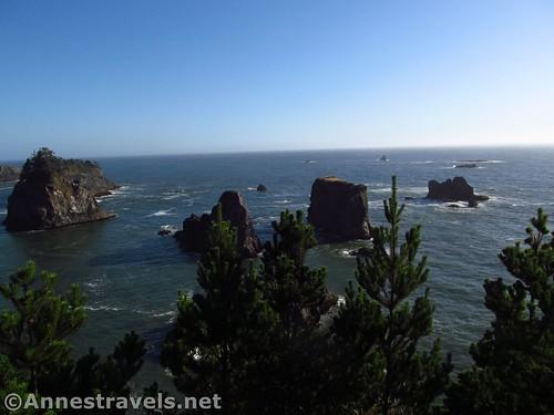 More sea stacks near the Arch Rock Picnic Area, Samuel H. Boardman State Scenic Corridor, Oregon