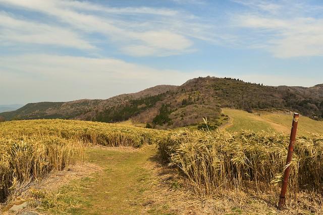 仁科峠から猫越岳方面の稜線歩道