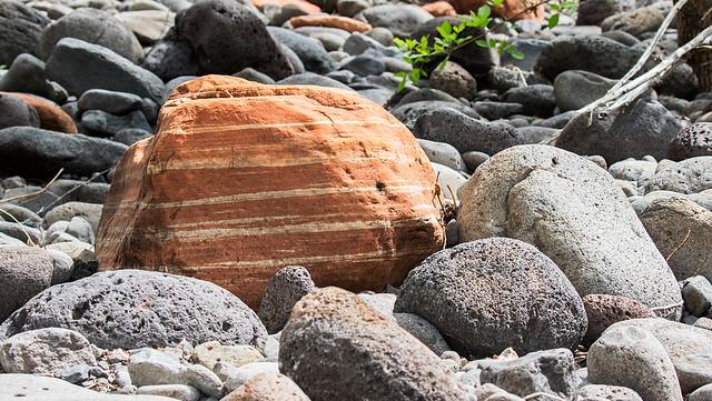 A-Rock-125-7D2-041017