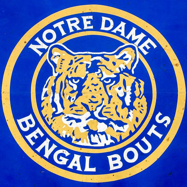Bengal Bouts Finals 3.3.17 (taken by Matt Cashore)