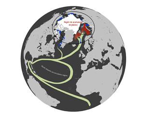 Región de acumulación de plástico en el Ártico.