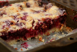 blackberry pie bars 8 | by crumblycookie