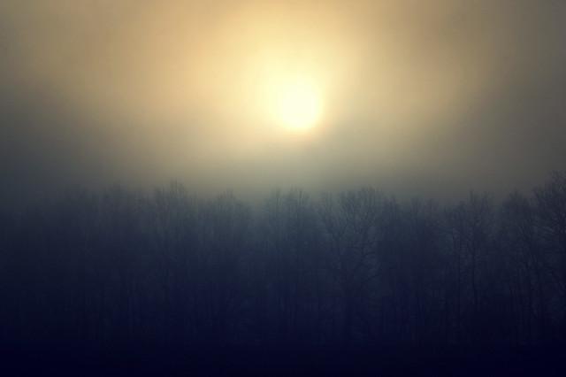 le brouillard du matin