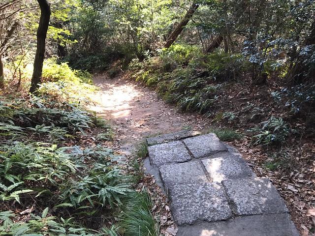 尾張富士 句碑のみちルート 石段終了