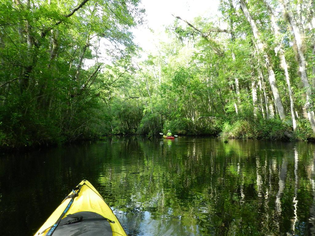 Thomas Creek, Duval County FL