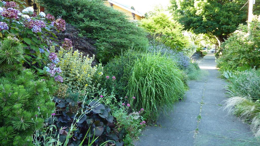 Portland Oregon Garden Tour Beautiful Sidewalk Garden