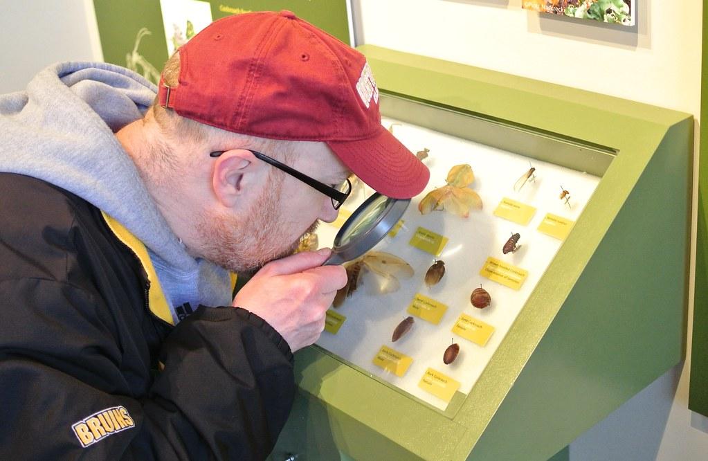 Jobs At Harvard Museum Of Natural History