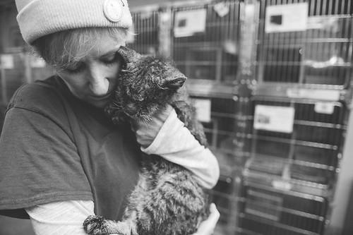 untouchable-cat-sarcoptic-mange-hugged-valentino-6-1
