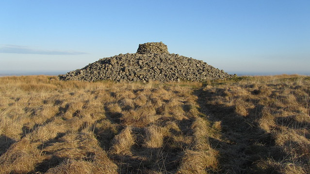 Eastern White Barrow