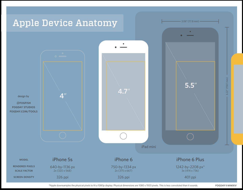 Apple Device Anatomy