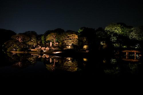 大名庭園ライトアップ 06RAW developed