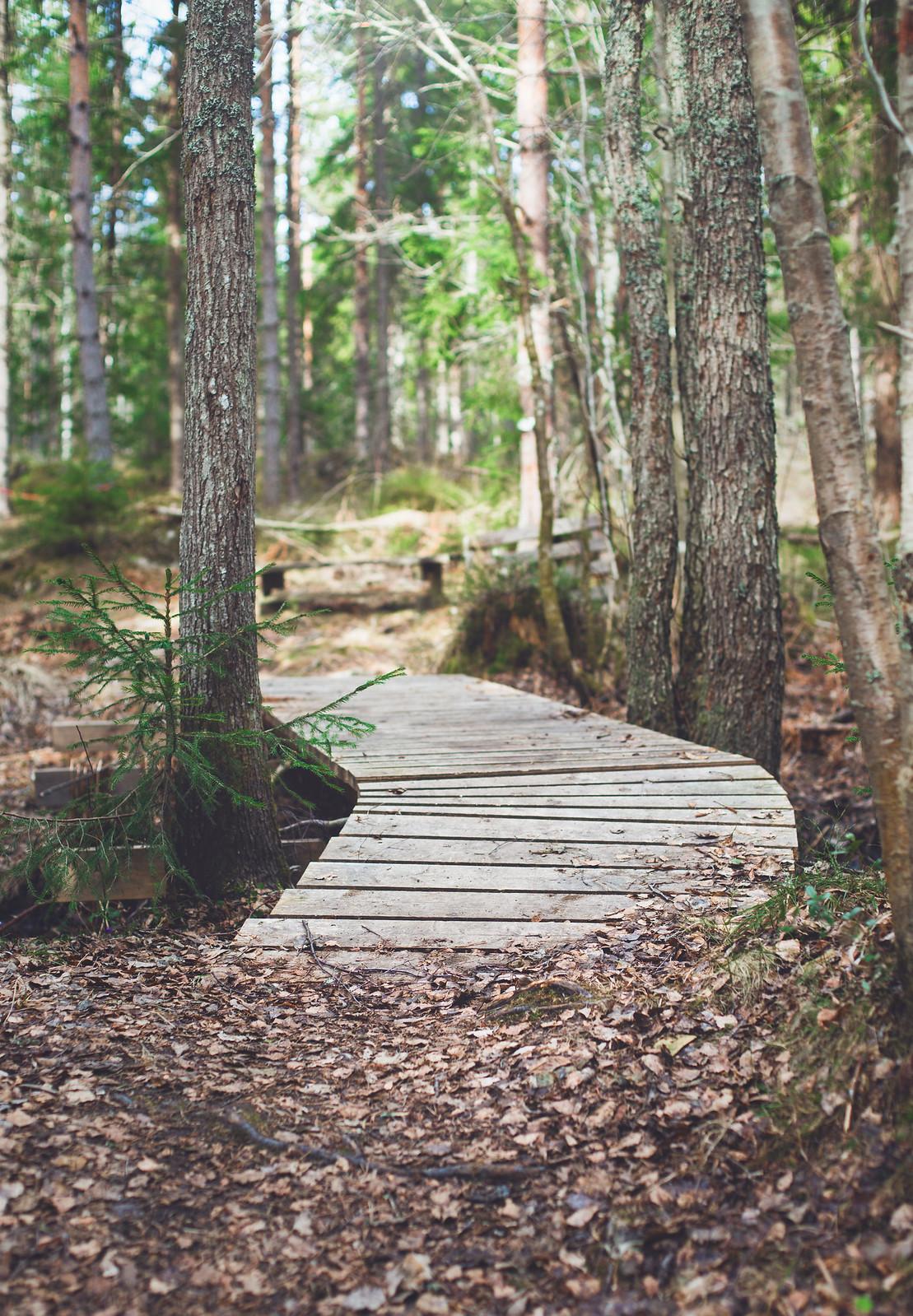 Promenad - Evelinas Ekologiska