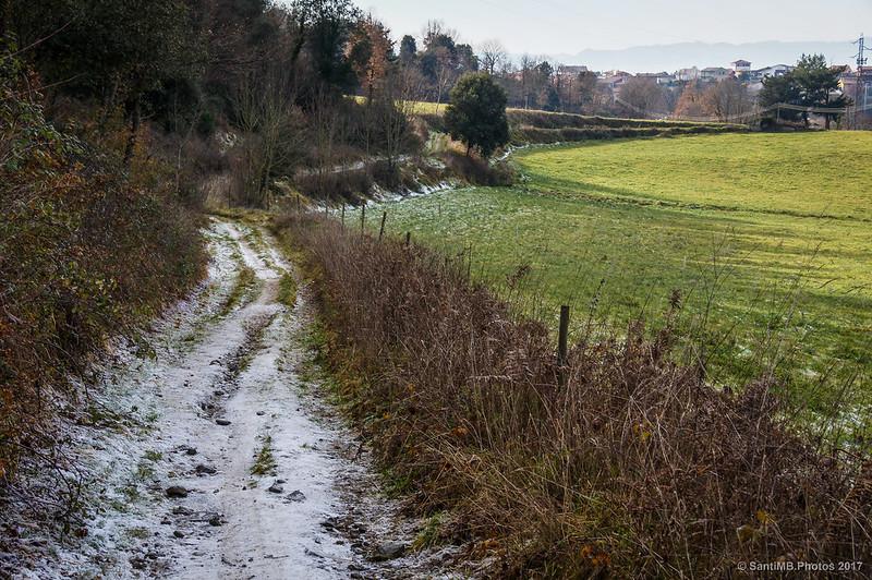 Camino del Campàs cubierto de escarcha