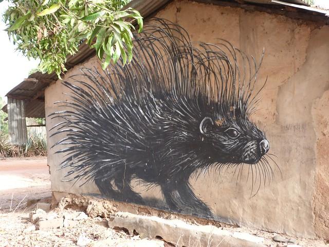 Puercoespín en aldea pintada de Gambia