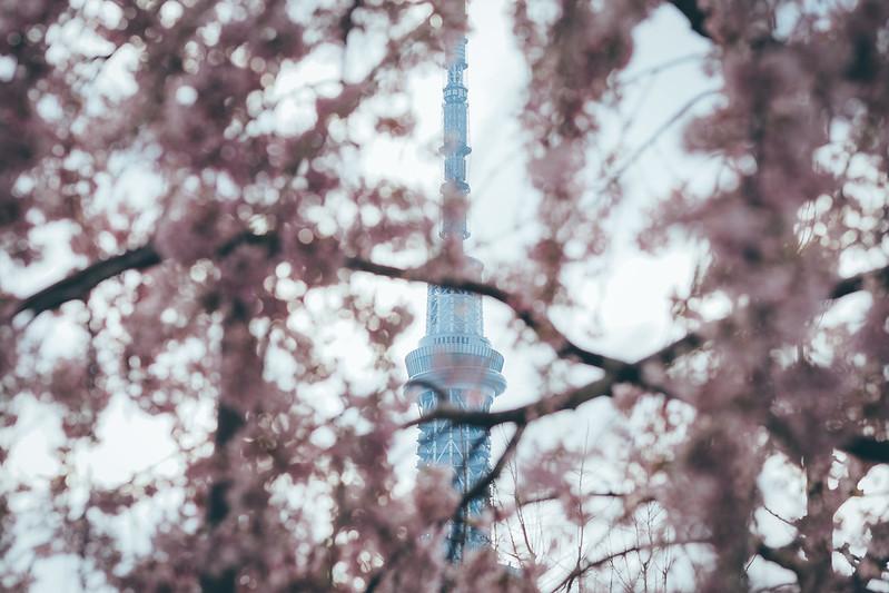 晴空塔|Tokyo Skytree