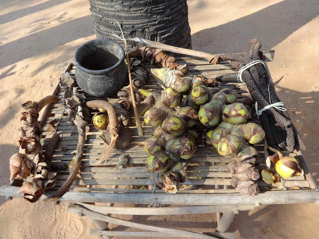 Pączki kwiatów kokosa, Birma