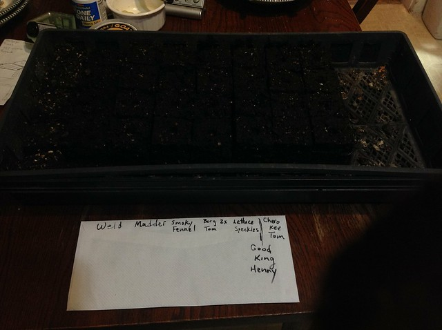 Documentation of seedlings