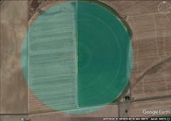 10 Farmer's Field 1K