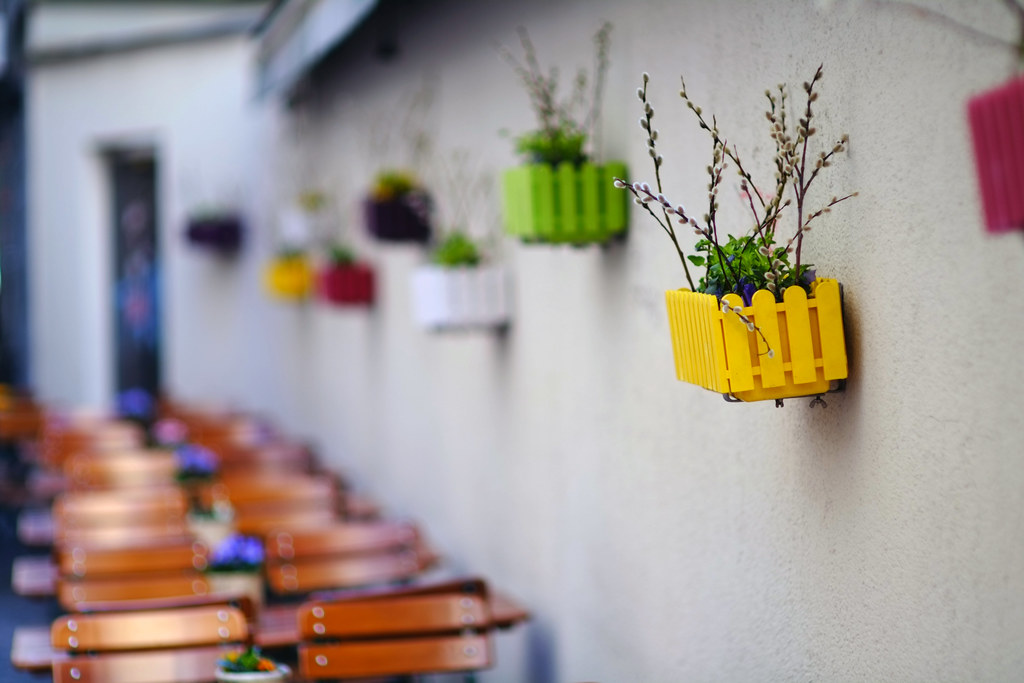 Colorful flower boxes