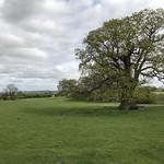 Elmley Castle walk