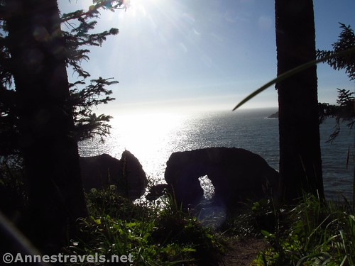 Arch Rock near sunset, Samuel H. Boardman State Scenic Corridor, Oregon