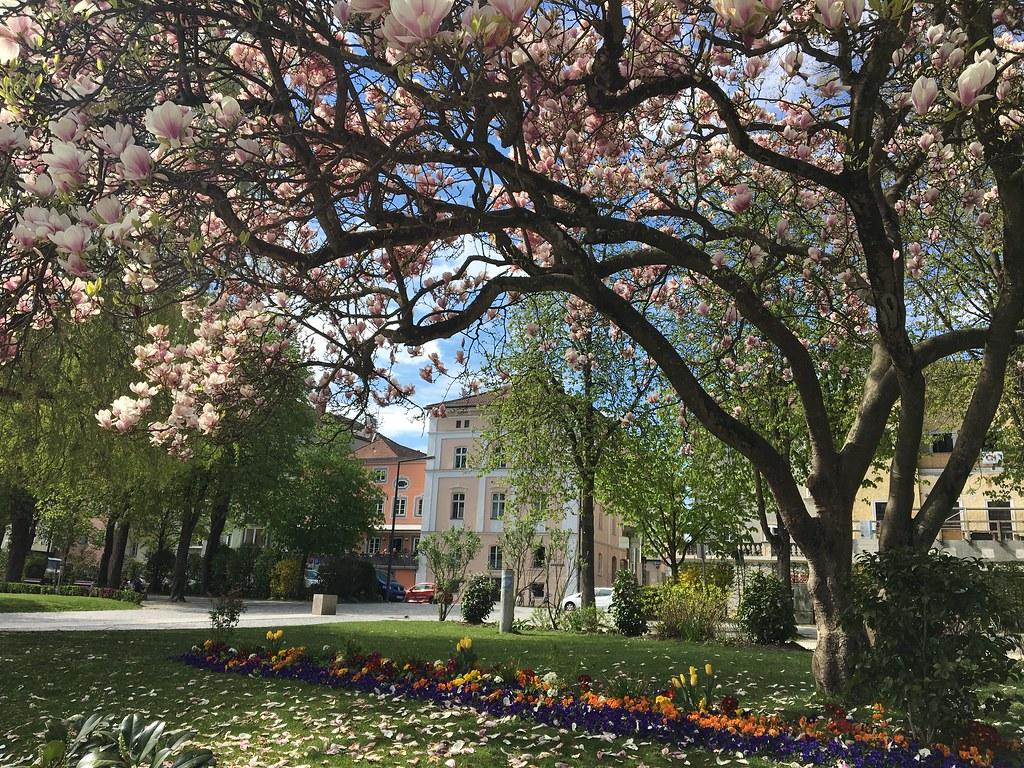 Autoloma Tonava | Passau | Bratislava