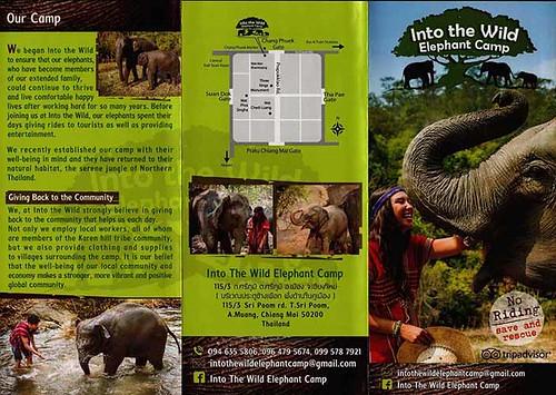 Into The Wild Elephant Camp Chiang Mai Thailand Brochure 1