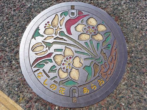 Arao Kumamoto, manhole cover (熊本県荒尾市のマンホール)