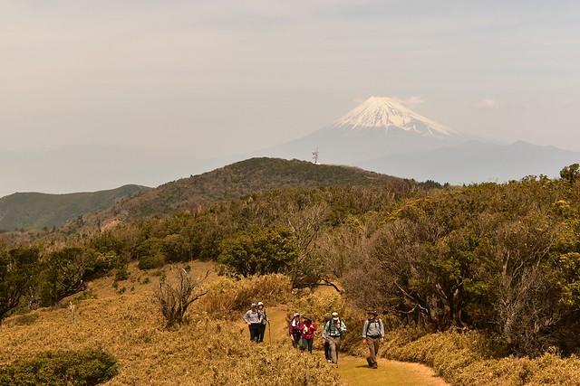 伊豆山稜線歩道からの富士山