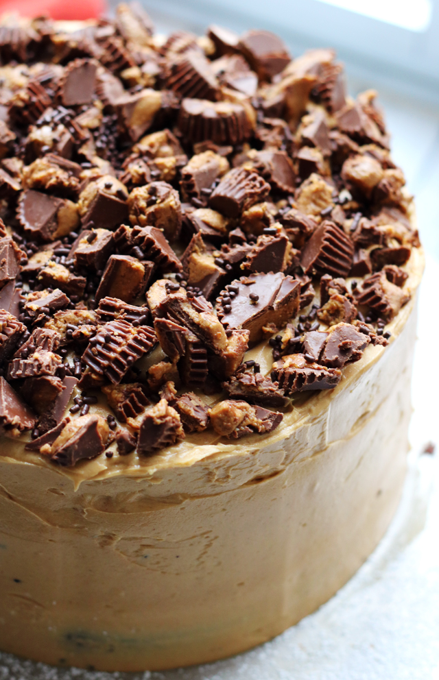 Decadent Triple Layer Dark Chocolate Cake with Whipped Peanut Butter Frosting