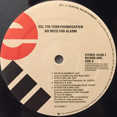 DEL THE FUNKYHOMOSAPIEN:NO NEED FOR ALARM(LABEL SIDE-A)