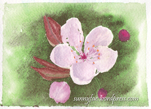 watercolour blossoms 1