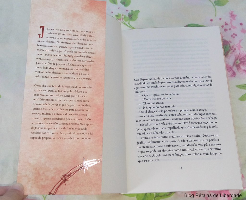Resenha, livro, O-Muro, William-Sutcliffe, Editora-Record, fotos, capa, opiniao, critica, trechos, citações, adolescentes, conflito-faixa-de-gaza