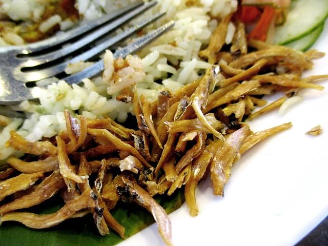 MyLAKSA nasi lemak special, ikan bilis