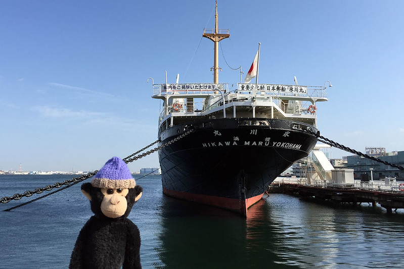 Monkey at Hikawa Maru