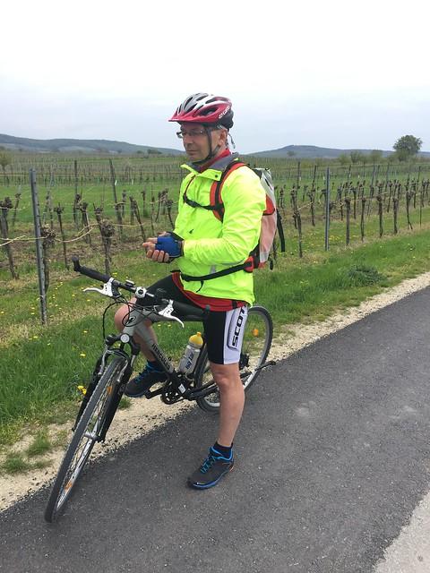 Der beste Ehemann Kirschblütenradweg - Burgenland - Neusiedlersee