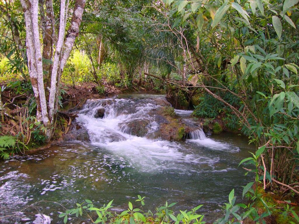 Rio do Bettione. (Mato Grosso do Sul)