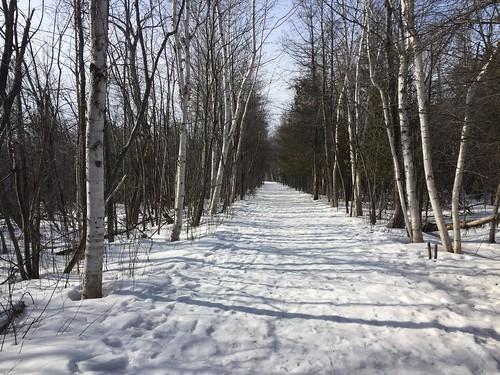 Photo walk at Lime Kiln Trail