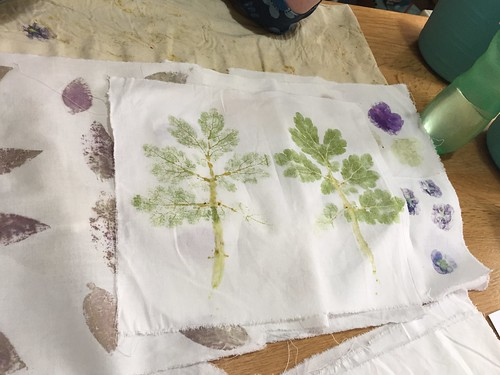 workshop Ecoprinting Wolop Gouda wol ecodyeing